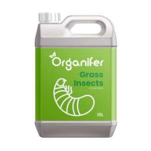 Grass Insects Concentraat - 10L voor 2.500 m2 - Tegen Engerlingen - Emelten - Rouwvlieg en andere schadelijke larven en grasinsecten in gras - Voorkomt en herstelt schade - Organifer