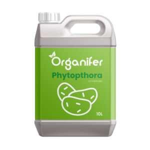 8719958995710 Phytophthora Concentraat 10L Voor-10.000m Tegen Aardappelziekte Voorkomt en geneest Aardappelplanten en Tomatenplanten Organifer
