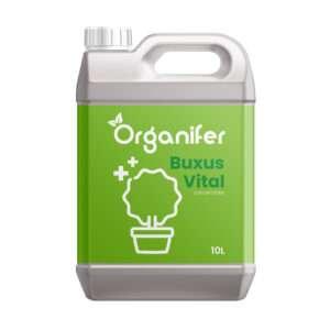 8719958995734 - Buxus Vital 10L - Concentraat voor 1000 meter haag - Natuurlijk weerbaarder tegen Buxusrups - Buxusmot - Buxus Schimmel - Organifer