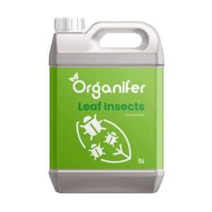 8719958994454 Leaf Insects Bladinsecten Concentraat - 5L voor 5000m2 - Tegen bladluizen, schildluis, wortelluis, rupsen, galmug, spint, tripsen, bladvlo en andere zuigende of vretende bladinsecten - Organifer